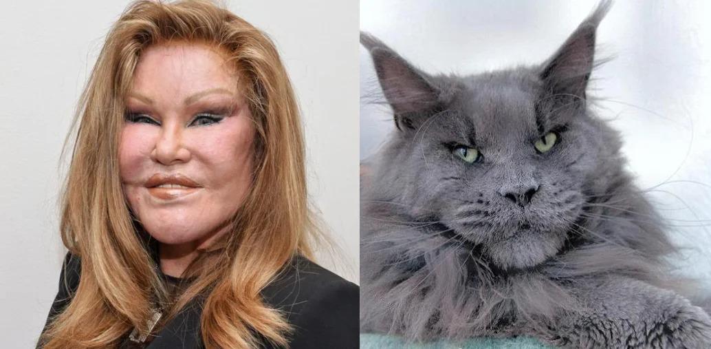 «Женщина-кошка»: Жизнь до и после пластики